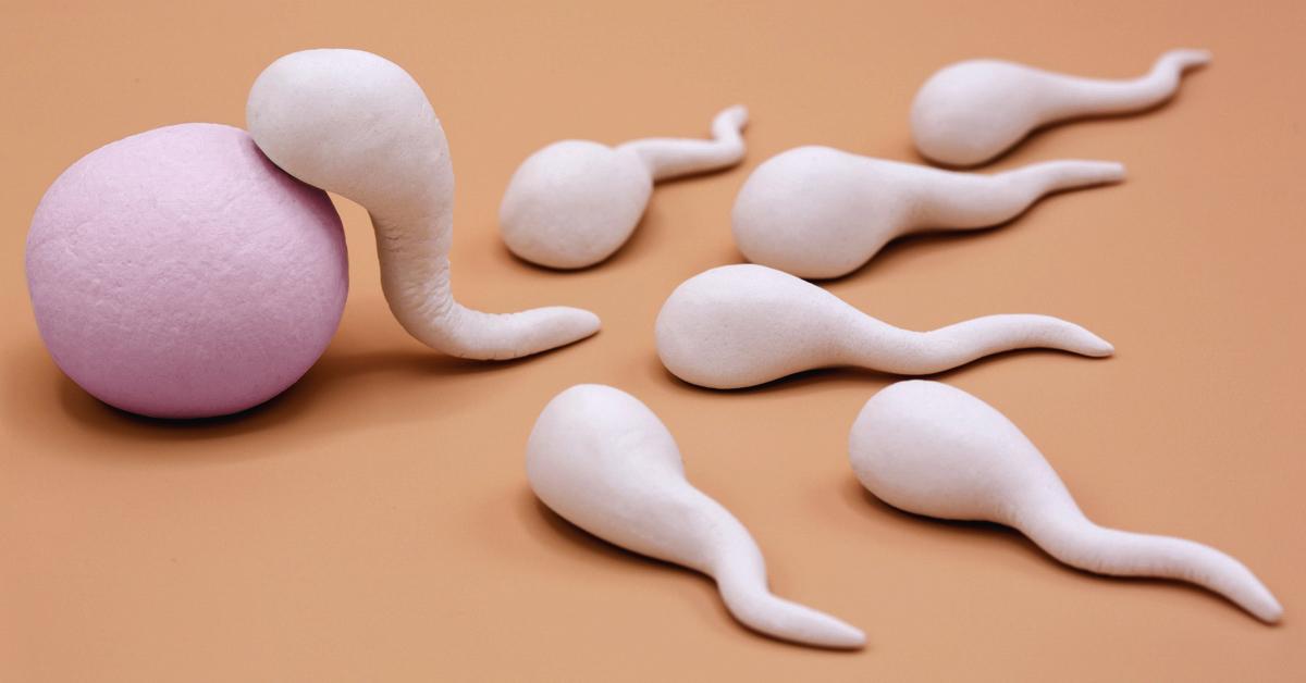 SU contre GD pour la préparation du sperme en IUI