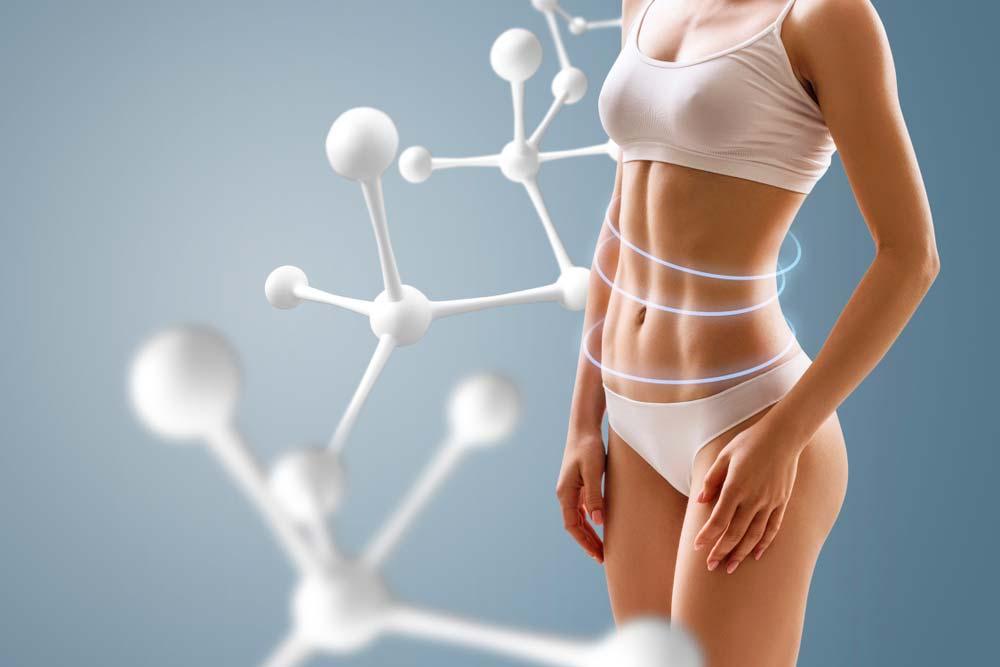 Le ralentissement métabolique : Augmenter son métabolisme