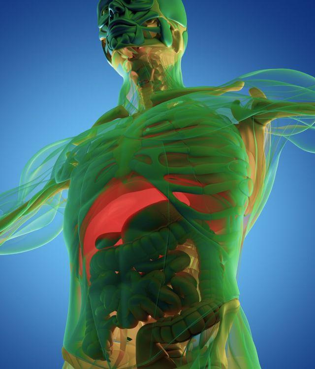 informations sur la perte de poids truvision moyen simple et facile de perdre du poids