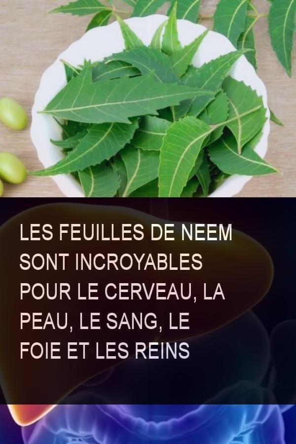 Masque cheveux nourrissant à la poudre de neem