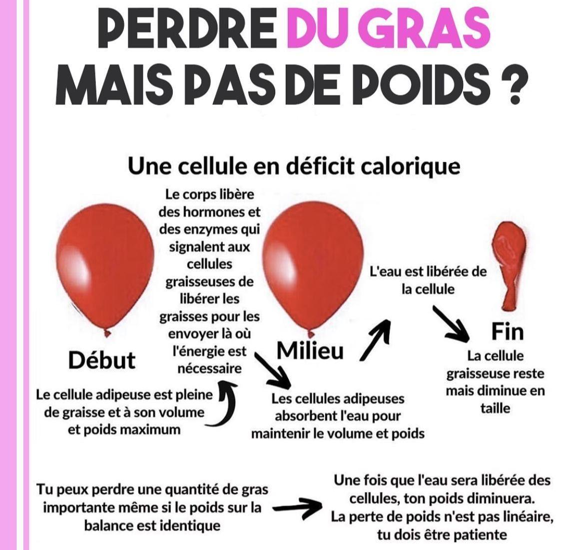 Top 12 des plus grands mythes sur la perte de poids | davidpicot.fr