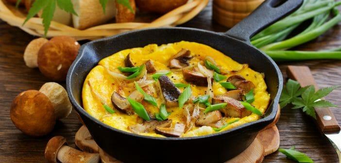 omelette saine pour brûler les graisses