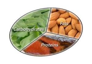 macros de perte de graisse idéales