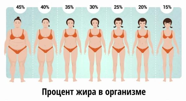 perte de graisse jira