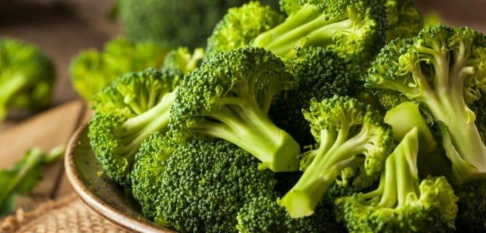 le brocoli cru brûle-t-il les graisses tracy moore perte de poids
