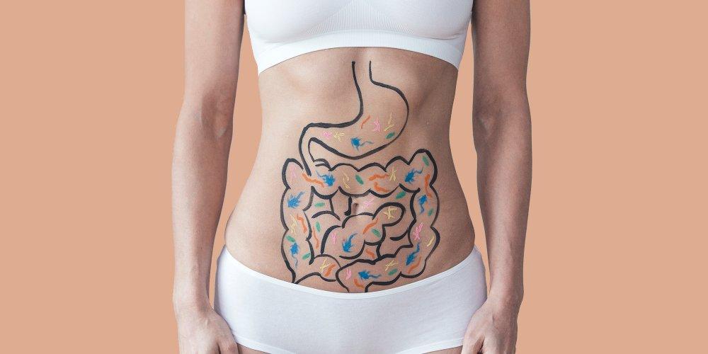 Surpoids et obésité, et si c'était l'intestin | La Nutrition Santé
