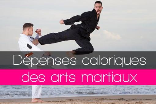 La pratique d'un art martial pour perdre du poids