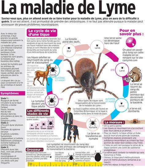 Forum Lyme Francophone