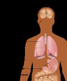 la perte de poids est les symptômes du vih pouvez-vous perdre du poids si vous fumez