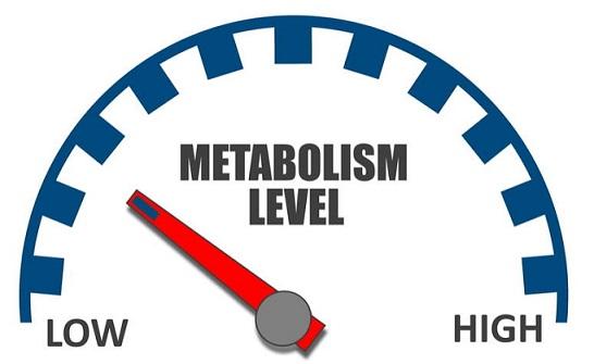 7 astuces pour augmenter son métabolisme