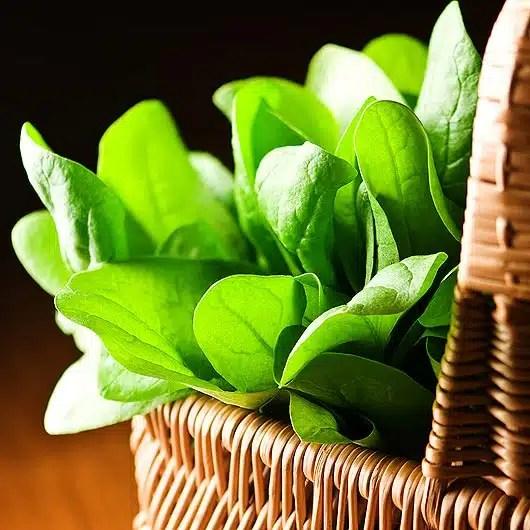 Brûleurs de graisse, produits 0 %, épinards... 10 idées reçues sur l'alimentation