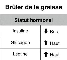BRÛLAGE DES GRAISSES. AIDE NATURELLE À LA PERTE DE POIDS / NUTRITION