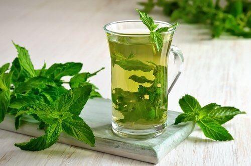 Avantages des feuilles de basilic pour perdre du poids. Les bienfaits du Basilic - savoir maigrir