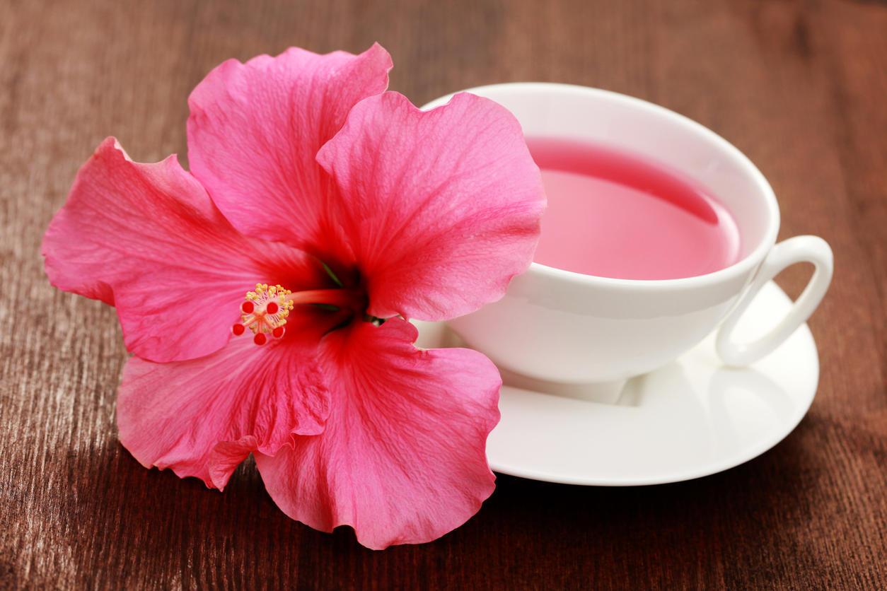 Le thé dhibiscus est-il bon pour perdre du poids