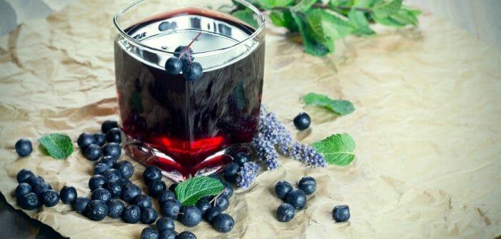 Le jus de myrtille est-il efficace pour maigrir ? - Le blog davidpicot.fr