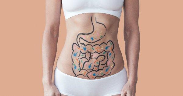 meilleur moyen naturel de perdre du gras rapidement