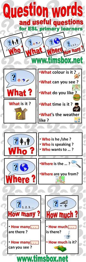 The wheel of questions in English