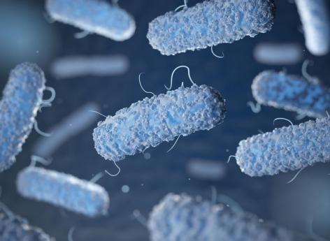 pourquoi y a-t-il une perte de poids dans la tuberculose