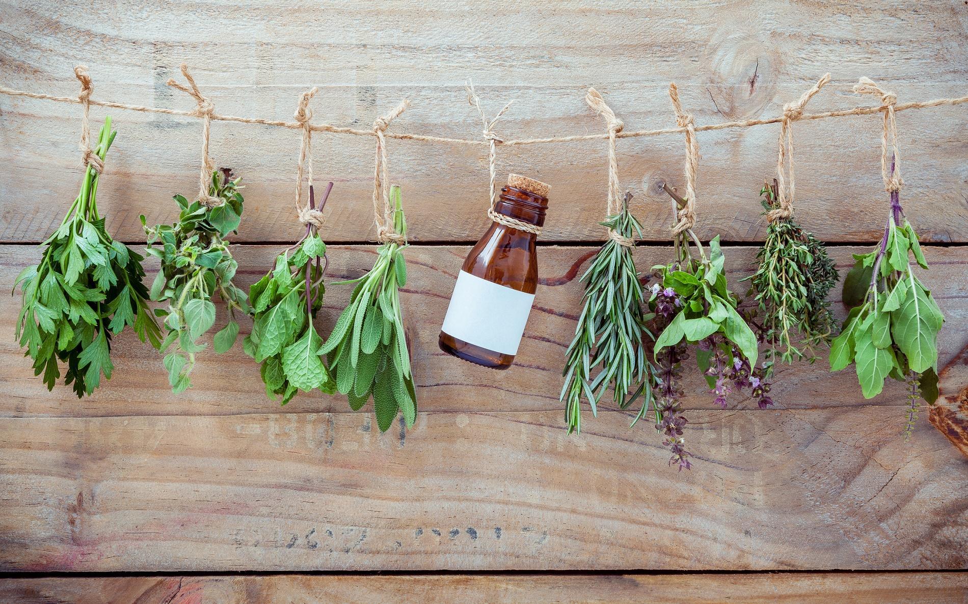 sapna minceur à base de plantes comment augmenter les enzymes de combustion des graisses