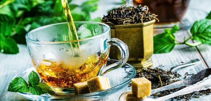 thés pour perdre du poids en une semaine