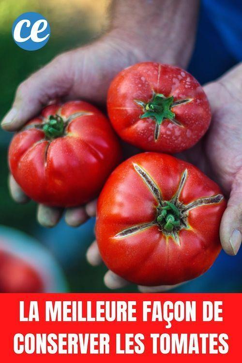 tomates cerises pour perdre du poids