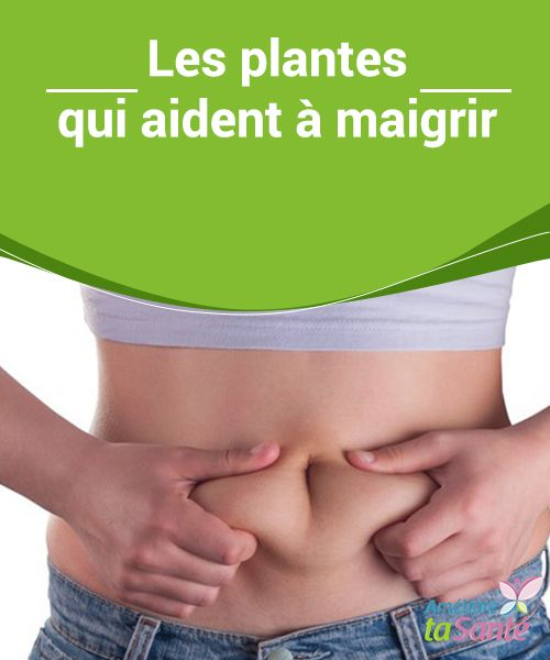 herbes qui vous aident à perdre du poids naturellement