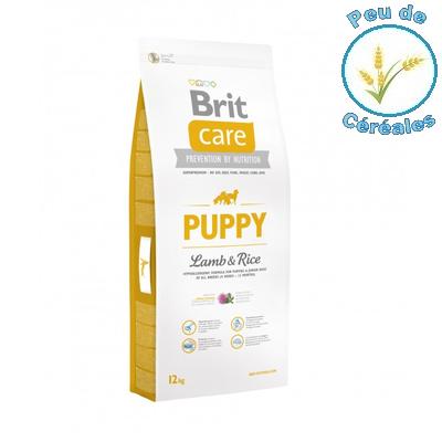 Brit : que valent vraiment ces aliments pour chien ?
