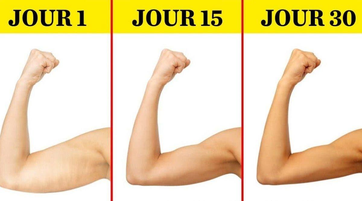 perdre facilement la graisse du bras